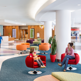 Benjamin Russell Hospital for Children Knoll Project Profile