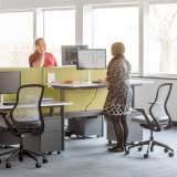 Knoll sit to stand adjustable height benching system with green privacy screens and wire management