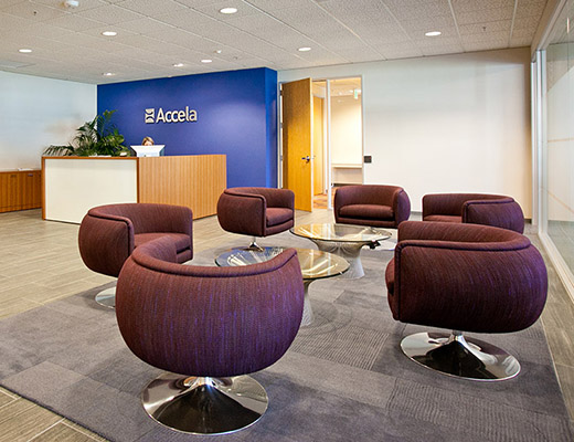 Accela Knoll Project Case Study