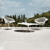 Petal Table and White Bertoia Diamond Chairs