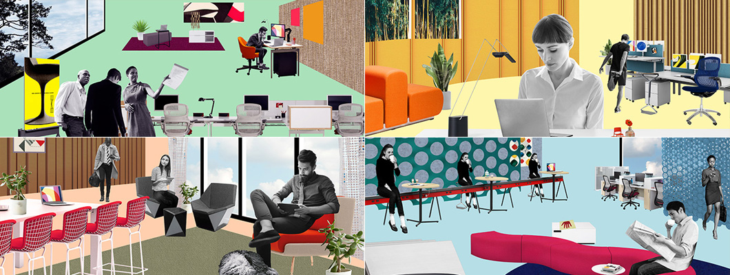 Knoll Workplace Themes