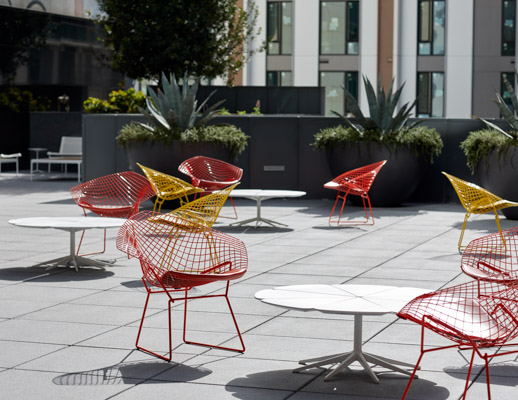 Bertoia Diamond Chair Richard Schultz Petal Coffee Table 1966 collection 1966 lounge chair 1966 coffee table outdoor community shared spaces