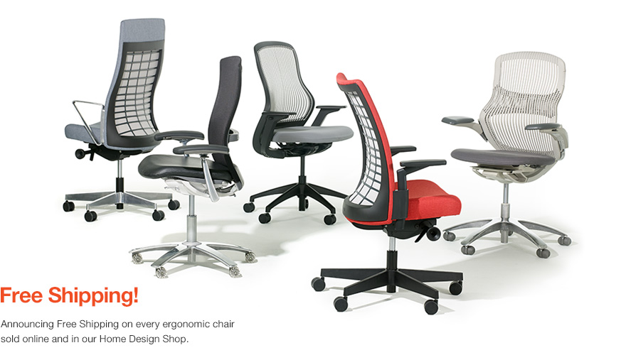 Free Shipping on all Ergonomic Desk Chairs