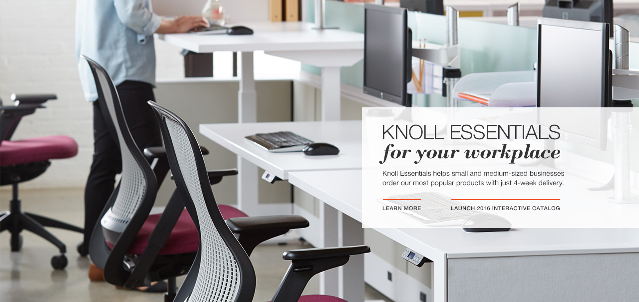 Knoll Essentials for Small Business 2016