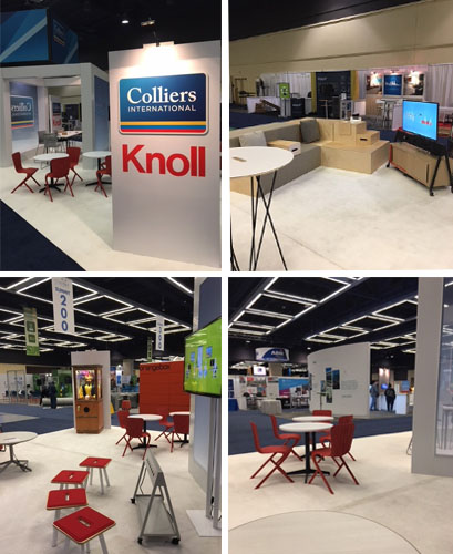 Colliers X Knoll